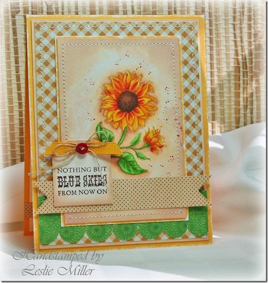 SunflowersOct2013
