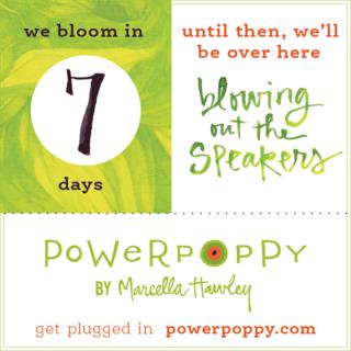 PP_Countdown_BlogPost_7DaysC