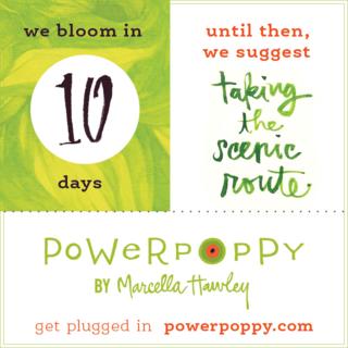 PP_Countdown_BlogPost_10DaysC