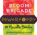 PP_DT_blogBadges_BloomBriga