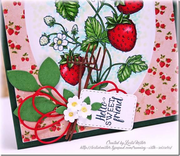 JuicyStrawberriesCloseJun2016