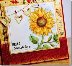 InPraiseSunflowersCloseAug201